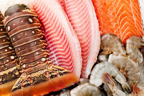 Seafood Fraud Fish Names