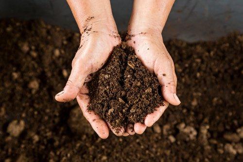 Environmental Management Standard