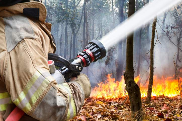 NFPA 1051-2016 Wildland Firefighter