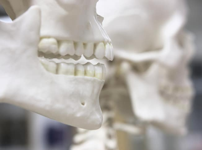 Forensic Dental Data Set