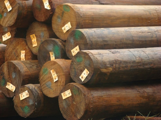 Ansi O5 1 2017 Wood Poles Specifications And