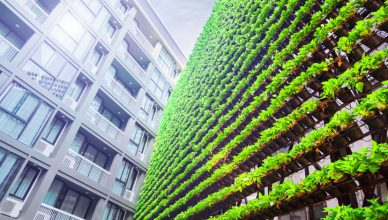 A lively green wall indicates an organization that has attained ANSI/MSE 50021-2016 superior energy performance.