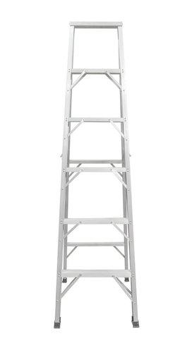 Ladder Metal ANSI ASC A14.2