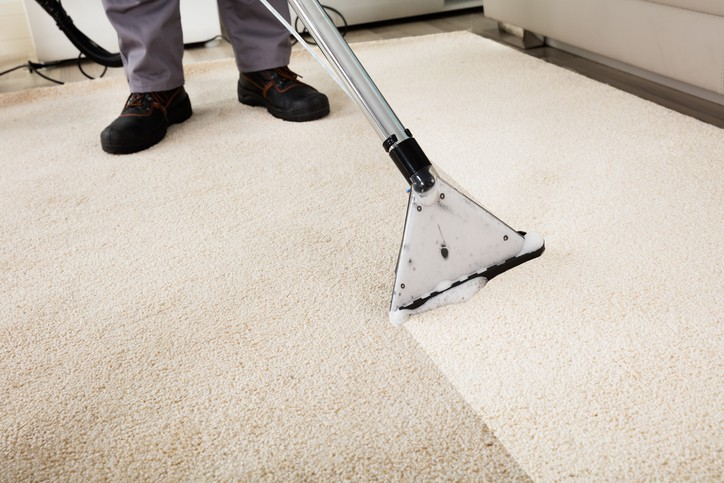 Cleaning Carpet Professionally ANSI/IICRC S100-2015
