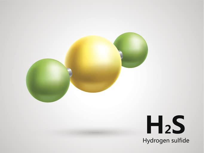 Hydrogen Sulfide H2S Training Programs in ANSI/ASSP Z390.1-2017