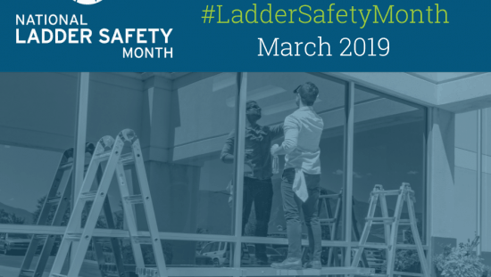 National Ladder Safety Month Step Up to Ladder Safety Graphic