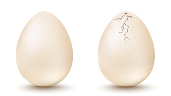 Cracked egg next to quality egg showing the risk of incorrect conclusions during ISO 2859-4:2020 acceptance sampling.