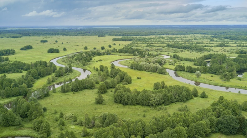 Green forest around the river Neman in Belarus, after which some countries name Germany.